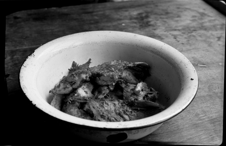 Рыба в миске. Фото В. Хруща. Архив В.Рябченко